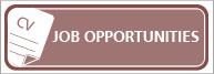 Job Oportunities